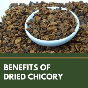Benefits Of Dried Chicory